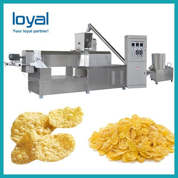 Automatic Nestle sugar coating corn flakes breakfast baby cereals making machine manufacturing equipment supplier #2 image