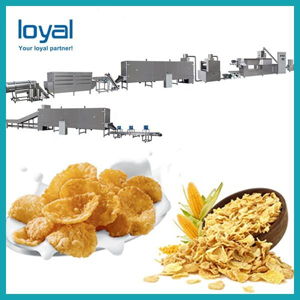 Small Scale Corn Flakes Production Line Breakfast Cereal Manufacturing Equipment #2 image