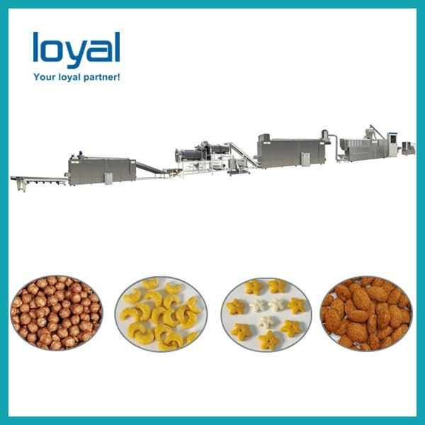 Fruit loops snack food making machine/breakfast cereals corn flakes #2 image