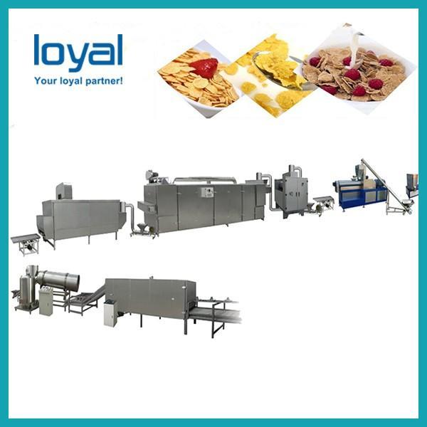 Fruit loops snack food making machine/breakfast cereals corn flakes #3 image